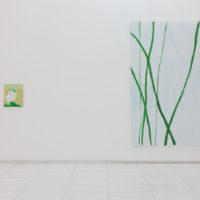 Installation view. Morten Slettemeås, green sky, yellow ground, 2017. Image courtesy of Galería Luis Adelantado.