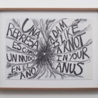 Damn Knot Anus/Nudo represa ano, 2016. Pencil on paper. 15 1⁄2 x 20 x 1 1⁄2 in. Courtesy the artist and Commonwealth and Council. Photo: Ruben Diaz.