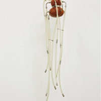 Thomas Glassford, Medusa, 1992, Industrial hoses, wood gourd and steel armature, 74