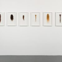 Regina José Galindo, Extensión/Extension, 2008. Six frames containing human hair and video. Dimensions variable. Courtesy of the artist and Baik Art. Photo: Michael Underwood