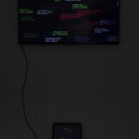 Vista de la instalación La confusión de las lenguas, 2017. Cortesía de Deslave