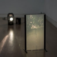Pedro Victor Brandao, Sociedade Brasileira: Parte II, 2016. Projector, book, refractive film layer. Courtesy of the artist