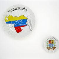 Ara Koshiro, The Typical Venezuelan Picture, 2011. Cortesía de Oficina #1