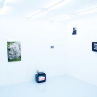 Exposición colectiva, Spring Rape. Vista de instalación, junio 2010