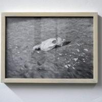 Miriam Salado. Vista de la exposición Estío, 206 Arte Contemporáneo, Tijuana, México, 2018. Cortesía de 206 Arte Contemporáneo