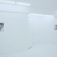 Marcelo Krasilcic, Bent Cock. Vista de instalación, enero 2012