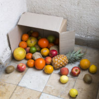 Nina Beier, Scheme, 2014. Produce from online organic fruit and vegetable box scheme, dimensions variable