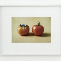 Shimabuku, Kaki and Tomato, 2008. framed c-print on aluminium, frame 36.6 x 46.2 cm; 14.4 x 18.1 in; without frame 18.8 x 28.4 cm; 7.4 x 11.1 in