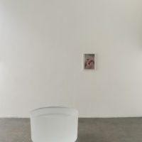 That Obscure Object of Desire. Exhibition view at Fortes D'Aloia & Gabriel | Galeria, São Paulo, 2018. Photo: Eduardo Ortega. Courtesy Fortes D'Aloia & Gabriel, São Paulo/Rio de Janeiro