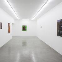 Vista de la exhibición La Vida, curaduría Alejo Ponce de León, HACHE, Buenos Aires, Argentina, 2018