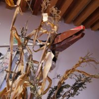 Xi mo matlazacan ce cehce, 2006. Escaleras de aluminio, cables, circuitos electrónicos y sensores. Dimensiones variables. Imagen cortesía del artista y Museo de Arte Contemporáneo de Oaxaca