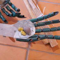 Sin título, 2018. Cuatro metates de piedra, sillas de madera, piedras pigmentadas, piedra tallada, circuitos electrónicos y sensores. Dimensiones variables. Imagen cortesía del artista y Museo de Arte Contemporáneo de Oaxaca
