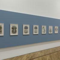 Hilma af Klint. Exhibition view of Mundos Possíveis, at Pinacoteca de São Paulo, São Paulo, Brazil, 2018. Photo: Isabella Matheus. Courtesy ofPinacoteca de São Paulo