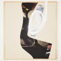 Kate Steciw. iNCISOR(detail), 2018. Cortesía de Gamma Galería