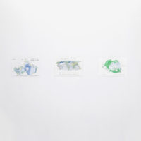 World Spins in Parallel / Antartica. 4 color pencil on paper. 11 X 17 inches each. Image courtesy of Embajada
