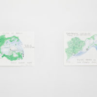 World Spins in Parallel / Antartica. 2 of 4 color pencil on paper. 11 X 17 inches each. Image courtesy of Embajada