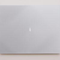 Emanuel Rossetti, brush, 2018, b/w print, mounted on aluminum, 39 cm × 49 cm. Photo credit: Jordàn Rodríguez