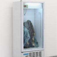 Presevation of the end. Refrigerador, tronco, parabrisas. Fotografía: Bruno Viruete. Cortesía de Ladera Oeste
