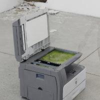 Puddle. Fotocopiadora, agua, plantas acuático. Fotografía: Bruno Viruete. Cortesía de Ladera Oeste
