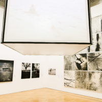 Radical Women: LaRadical Women: Latin American Art 1960-1985. Installation View Pinacoteca de Sao Paulo, Brasil 2018.