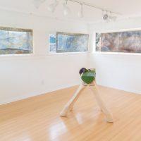 Genevieve Belleveau, Circlusion, Garden, 2018, installation view