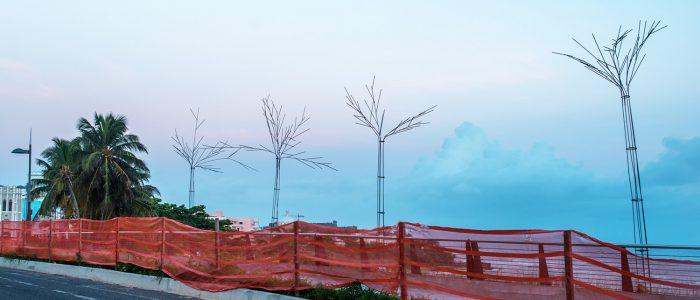 Puerta de Tierra, paraíso tropical
