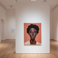 Ronald Jackson and Toyin Ojih Odutola installation view from the exhibition Pulse (2018). Image courtesy of Nerman Museum of Contemporary Art