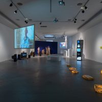 Exhibition view Take My Money/Take My Body, LACE Emerging Curators Program 2019. Courtesy of LACE