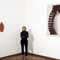 Lucía Pizzani, Coraza (2019). Installation view. Image courtesy of Fundación Marso