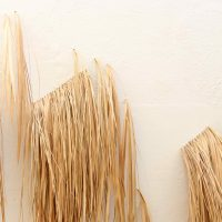 Rodrigue Mouchez, Mapa Palma (detail) (2019). Palm leaves, variable dimension. Exhibition view of Litro por kilo, Massapê Projetos, São Paulo, Brazil, 2019