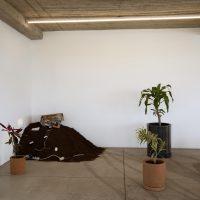 No podrán detener la primavera (2019). Vista de instalación. Imagen cortesía de los artistas y Ladera Oeste