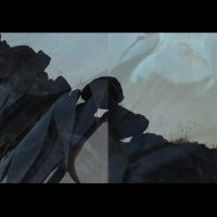 Rowan Burkam y Luis Alfonso Villalobos, Ave peregrina (2019). 16 min 10 seg Ed .1/3. Imagen cortesía de Rincón Projects