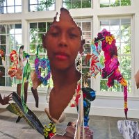 Joiri Minaya, #dominicanwomengooglesearch, 2016, installation view at the Sunroom Project Space at Wave Hill, Bronx, NY. Photo by Stefan Hagen.