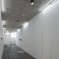 Ramiro Ávila y Héctor Jiménez, El mono y la serpiente (2019). Vista de instalación. Foto por Carlos Corona