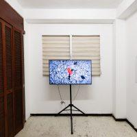 Seth Ferris, After Vieques (2019). Video HD, color, sonido. Cortesía del artista e Hidrante