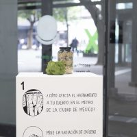 Tráfico Libre de Conocimientos (TLC), O2 (2014- 2019). Foto por Alum Gálvez. Cortesía de Local 21 arte