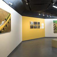 Vaivém (2019). Vista de instalación. © Edson Kumasaka. Imagen cortesía de Raphael Fonseca