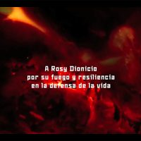 Naomi Rincón Gallardo, Resiliencia Tlacuache (2019). Vista de instalación. Imagen cortesía de Parallel Oaxaca
