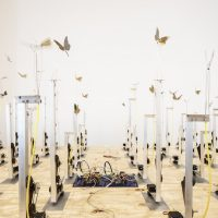 Fernando Palma Rodríguez, Tocihuapapalutzin (Our revered lady butterfly) (2012) Microcontrollers, wood, aluminum. Courtesy the artist, Ballroom Marfa, and House of Gaga. Photo by Alex Marks