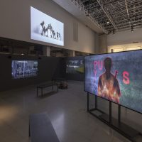 From left to right: Gabriela Golder, Laboratorio de invención social (o posibles formas de construcción colectiva), 2018 (four channel video installation; Mohau Modisakeng, Ga Bose Gangwe, 2014 (video, 2'15''); Ezra Wube, Hidirtina / Sisters, 2018 (video 9'14''). Photo courtesy of Videobrasil. Photographer: Everton Ballardin