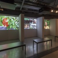 Alto Amazonas Audiovisual, About Cameras, Spirits, and Occupations: A Montage-essay Triptych, 2018 (three-channel video installation). Photo courtesy of Videobrasil. Photographer: Everton Ballardin