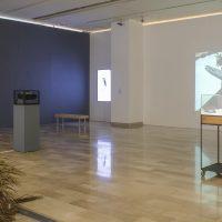 PAISAJE/TERRITORIO.Imaginarios de la selva en las artes visuales (2019). Vista de instalación. Crédito:Ricardo Bohórquez / MAAC