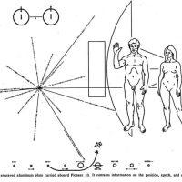 La imagen que decidieron enviar la espacio como forma de introducir la a vida alienígena sobre la humanidad y la anatomía humana