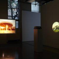 Minerva Cuevas, Disidencia (2019). Installation view, Mishkin Gallery. Photograph by Isabel Asha Penzlien