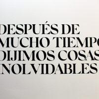 Después de mucho tiempo, dijimos cosas inolvidables (2019). Título de la exposición. Foto por Andrea Vázquez