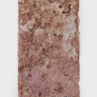 Sarah McMenimen, Travertine Aggregate (2019). Resin, dirt, clay, snakeskin. Image courtesy of the artist and Garden. Photo by Marten Elder