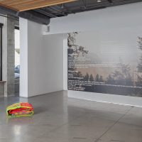 Native Art Department International, Bureau of Aesthetics. Installation View, curated by Mercer Union. October 12, 2019 to January 25, 2020. KADIST San Francisco. Photo by Jeff Warrin