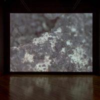 Maya Watanabe, Liminal (2019). Video instalación, 20'00