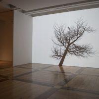 Rafael Lozano-Hemmer, Presencia Inestable(2019). Vista de instalación. Imagen cortesía de MARCO