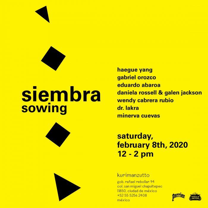 kurimanzutto presenta «siembra», un proyecto con el que la galería propone un ritmo de exposición propio.